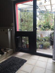 Hundeklappe Glastür